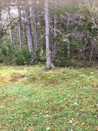 Photo 29: 1883 West Apple River in Apple River: 102S-South Of Hwy 104, Parrsboro and area Residential for sale (Northern Region)  : MLS®# 201910095