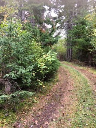 Photo 28: 1883 West Apple River in Apple River: 102S-South Of Hwy 104, Parrsboro and area Residential for sale (Northern Region)  : MLS®# 201910095