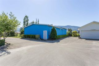 Photo 14: 42148 KEITH WILSON Road in Sardis - Greendale: Greendale Chilliwack House for sale (Sardis)  : MLS®# R2370245