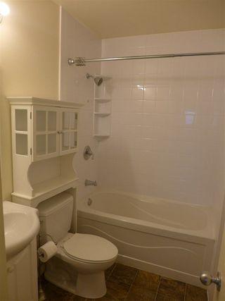 Photo 12: 8328 166 Street in Edmonton: Zone 22 House for sale : MLS®# E4157642