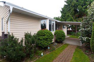 Photo 25: 23426 Dewdney Trunk Road in Maple Ridge: Home for sale : MLS®# V902328