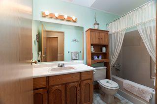 Photo 20: 23426 Dewdney Trunk Road in Maple Ridge: Home for sale : MLS®# V902328