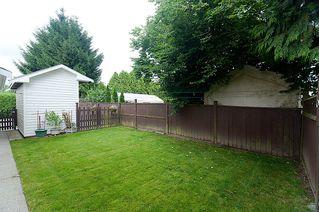 Photo 28: 23426 Dewdney Trunk Road in Maple Ridge: Home for sale : MLS®# V902328