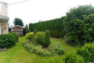 Photo 23: 23426 Dewdney Trunk Road in Maple Ridge: Home for sale : MLS®# V902328