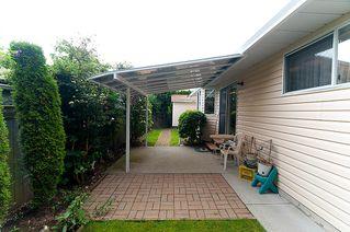 Photo 26: 23426 Dewdney Trunk Road in Maple Ridge: Home for sale : MLS®# V902328