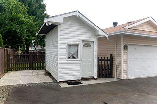 Photo 29: 23426 Dewdney Trunk Road in Maple Ridge: Home for sale : MLS®# V902328