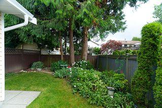 Photo 27: 23426 Dewdney Trunk Road in Maple Ridge: Home for sale : MLS®# V902328