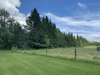 Photo 18: : Rural Westlock County House for sale : MLS®# E4162547