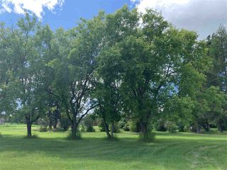 Photo 20: : Rural Westlock County House for sale : MLS®# E4162547