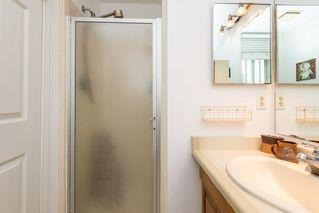 Photo 18: 8511 189 Street in Edmonton: Zone 20 House for sale : MLS®# E4164057