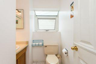 Photo 13: 8511 189 Street in Edmonton: Zone 20 House for sale : MLS®# E4164057