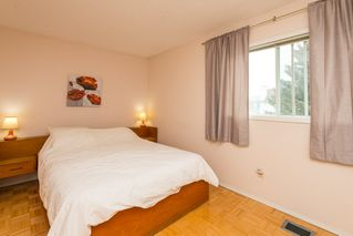 Photo 20: 8511 189 Street in Edmonton: Zone 20 House for sale : MLS®# E4164057