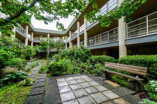 "Photo 1: 115 22277 122 Avenue in Maple Ridge: West Central Condo for sale in ""THE GARDENS"" : MLS®# R2388488"