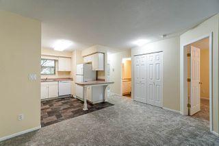 "Photo 7: 115 22277 122 Avenue in Maple Ridge: West Central Condo for sale in ""THE GARDENS"" : MLS®# R2388488"