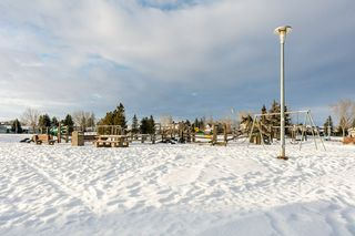 Photo 47: 8208 187 Street in Edmonton: Zone 20 House for sale : MLS®# E4184183