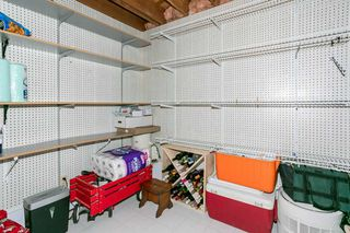 Photo 26: 8208 187 Street in Edmonton: Zone 20 House for sale : MLS®# E4184183
