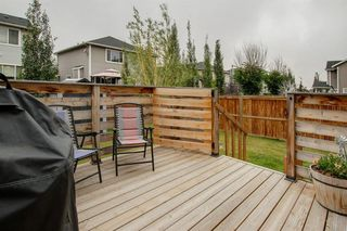 Photo 26: 65 Williamstown Green NW: Airdrie Detached for sale : MLS®# A1034072