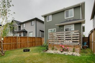 Photo 28: 65 Williamstown Green NW: Airdrie Detached for sale : MLS®# A1034072