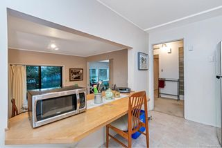 Photo 34: 1291 Ocean View Rd in : SE Maplewood House for sale (Saanich East)  : MLS®# 859834