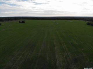 Photo 9: Melnychuk Land in Hudson Bay: Farm for sale (Hudson Bay Rm No. 394)  : MLS®# SK834016