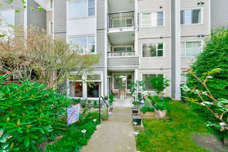 """Photo 17: 108 6888 SOUTHPOINT Drive in Burnaby: South Slope Condo for sale in """"CORTINA"""" (Burnaby South)  : MLS®# R2053007"""