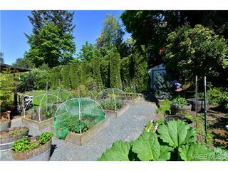 Photo 17: 4806 Sunnygrove Pl in VICTORIA: SE Sunnymead House for sale (Saanich East)  : MLS®# 728851