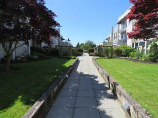 "Photo 9: 307 4738 53 Street in Delta: Delta Manor Condo for sale in ""SUNNINGDALE ESTATES"" (Ladner)  : MLS®# R2169328"