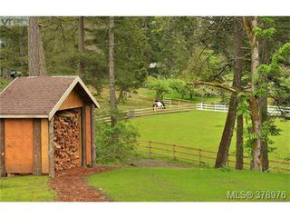 Photo 17: 354 Conway Road in VICTORIA: SW Interurban Single Family Detached for sale (Saanich West)  : MLS®# 378976