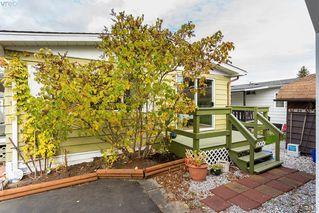 Photo 18: 28 1498 Admirals Rd in VICTORIA: Es Esquimalt Manufactured Home for sale (Esquimalt)  : MLS®# 772790
