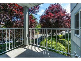 "Photo 19: 212 5465 201 Street in Langley: Langley City Condo for sale in ""Briarwood Park"" : MLS®# R2290256"