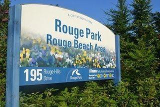Photo 15: 55 Port Union Road in Toronto: Rouge E10 House (3-Storey) for sale (Toronto E10)  : MLS®# E4393506