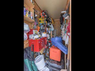 Photo 19: 31 2115 118 Street in Edmonton: Zone 16 Carriage for sale : MLS®# E4149061