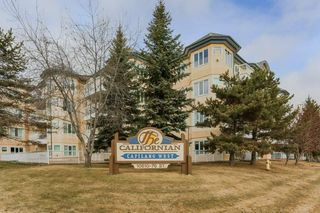 Photo 3: 313 10610 76 Street in Edmonton: Zone 19 Condo for sale : MLS®# E4152056