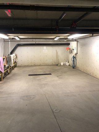 Photo 28: 313 10610 76 Street in Edmonton: Zone 19 Condo for sale : MLS®# E4152056