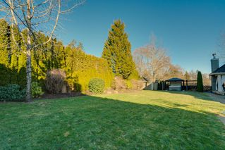 "Photo 43: 14051 30 Avenue in Surrey: Elgin Chantrell House for sale in ""ELGIN PARK ESTATES"" (South Surrey White Rock)  : MLS®# R2367026"