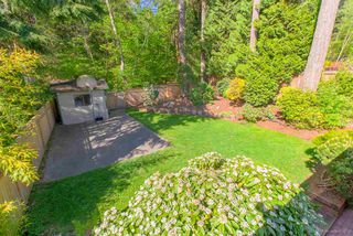 Photo 17: 2295 KING ALBERT Avenue in Coquitlam: Central Coquitlam House for sale : MLS®# R2367417