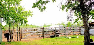 Photo 21: 43321 Twp Rd 623: Rural Bonnyville M.D. House for sale : MLS®# E4158979