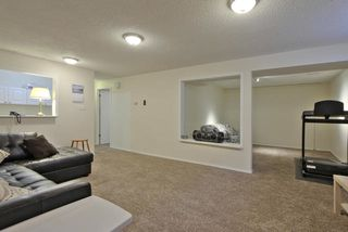 Photo 17: 47 WESTVIEW Crescent: Spruce Grove House for sale : MLS®# E4162308