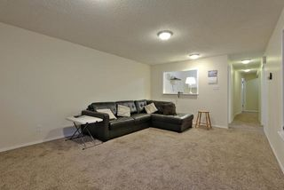 Photo 14: 47 WESTVIEW Crescent: Spruce Grove House for sale : MLS®# E4162308