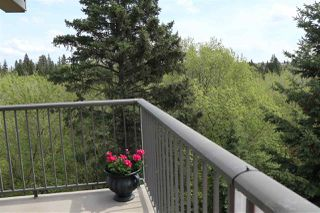 Photo 7: 303 9505 77 Avenue in Edmonton: Zone 17 Condo for sale : MLS®# E4176293