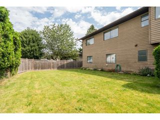 Photo 32: 8843 204A Street in Langley: Walnut Grove House for sale : MLS®# R2481339