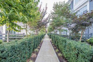 "Photo 36: 74 8130 136A Street in Surrey: Bear Creek Green Timbers Townhouse for sale in ""KINGS LANDING"" : MLS®# R2500414"