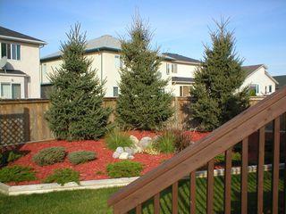 Photo 5: 35 Fenwick Place in Winnipeg: Fort Garry / Whyte Ridge / St Norbert Single Family Detached for sale (South Winnipeg)  : MLS®# 1020133