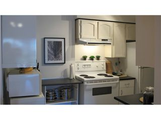 "Photo 6: 204 2910 ONTARIO Street in Vancouver: Mount Pleasant VE Condo for sale in ""ONTARIO PLACE"" (Vancouver East)  : MLS®# V1057351"