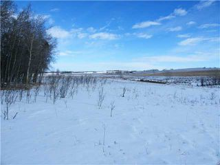 Photo 3: : Rural Mountain View County Rural Land for sale : MLS®# C3653320