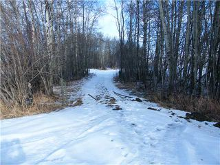 Photo 2: : Rural Mountain View County Rural Land for sale : MLS®# C3653320