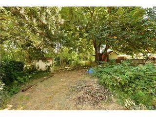 Photo 13: 2821 Shelbourne Street in VICTORIA: Vi Fernwood Single Family Detached for sale (Victoria)  : MLS®# 358919