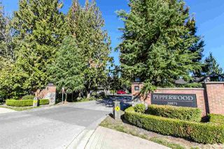 "Photo 20: 156 20875 80 Avenue in Langley: Willoughby Heights Townhouse for sale in ""PEPPERWOOD"" : MLS®# R2143367"