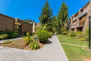 """Photo 19: 213 3921 CARRIGAN Court in Burnaby: Government Road Condo for sale in """"LOUGHEED ESTATES"""" (Burnaby North)  : MLS®# R2182216"""