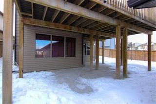 Photo 38: 21 CRANBERRY Cove SE in Calgary: Cranston House for sale : MLS®# C4164201